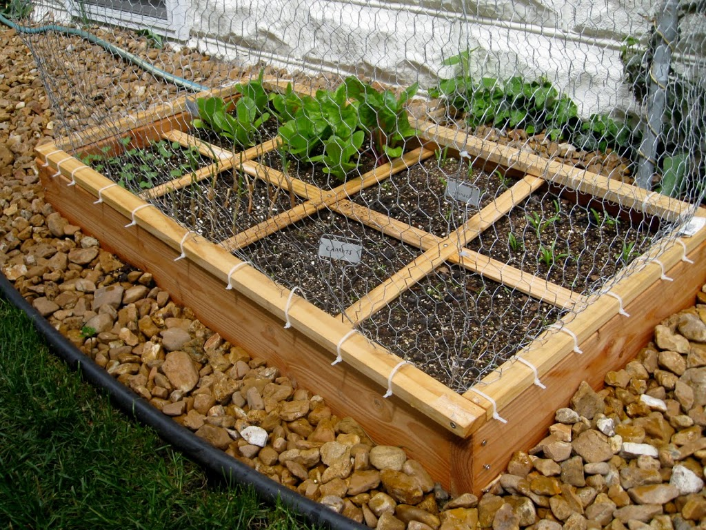 Square Foot Gardening-Update