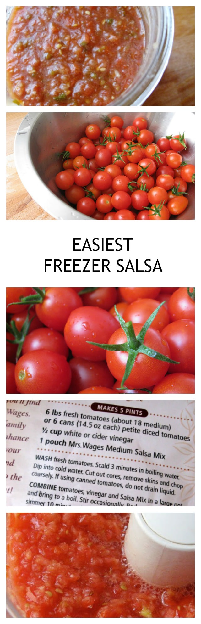 The easiest and best freezer salsa