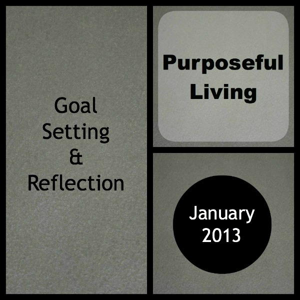 Goal setting and reflection