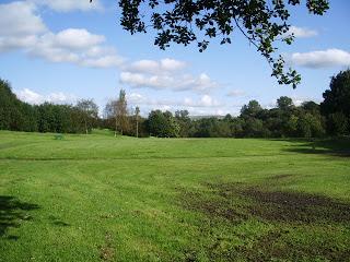 Large open field