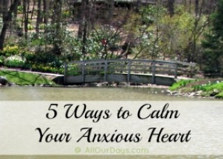 """Bridge with text """"how to calm your anxious heart"""""""