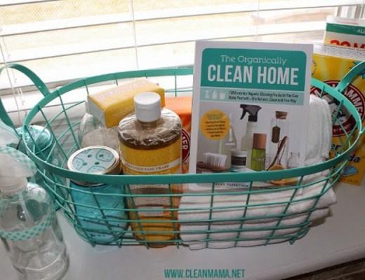 organically clean home