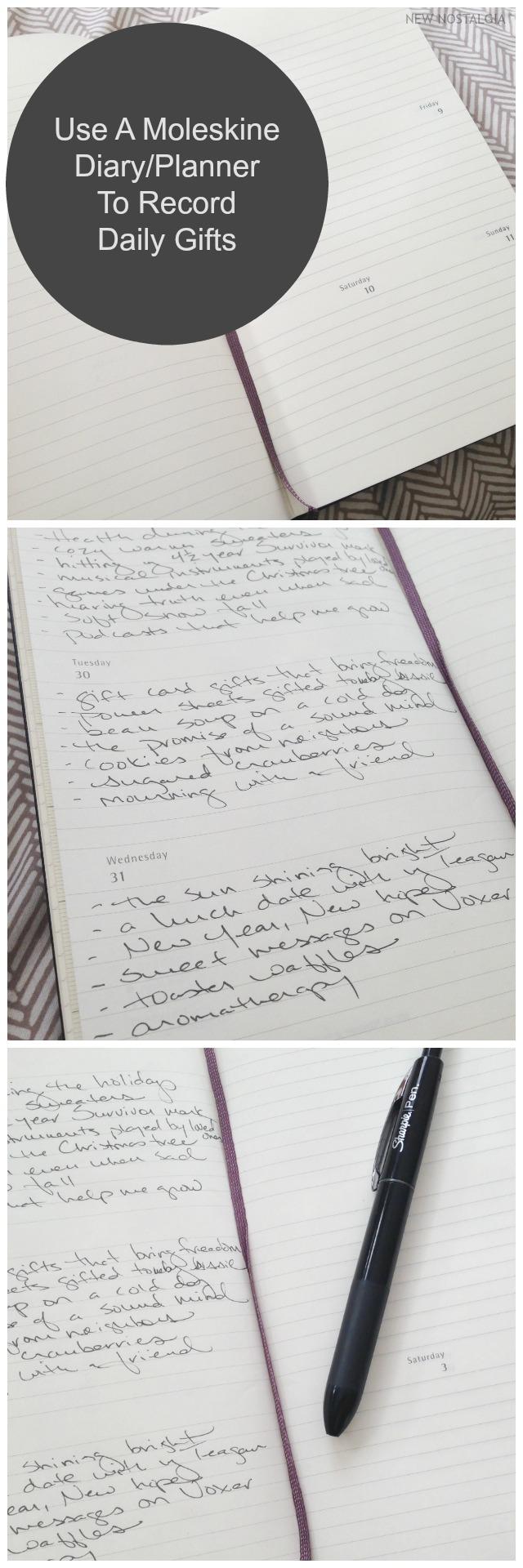 Moleskine Journal 2