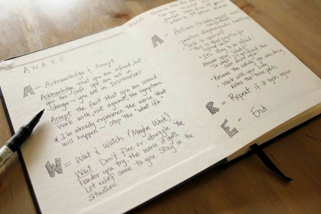 Panic Journal