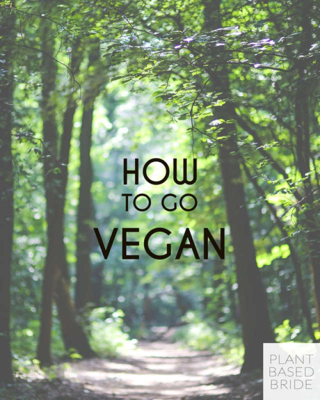 At+a+loss+for+how+to+transition+to+veganism?++Let+me+help+you+by+sharing+my+tips+and+tricks+for+going+vegan!++Learn+how+to+go+vegan+at+plantbasedbride.com!