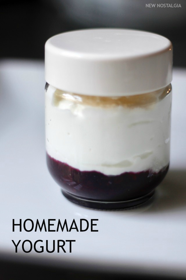 Jar-Instant-Pot-Yogurt-Blueberry--PIN