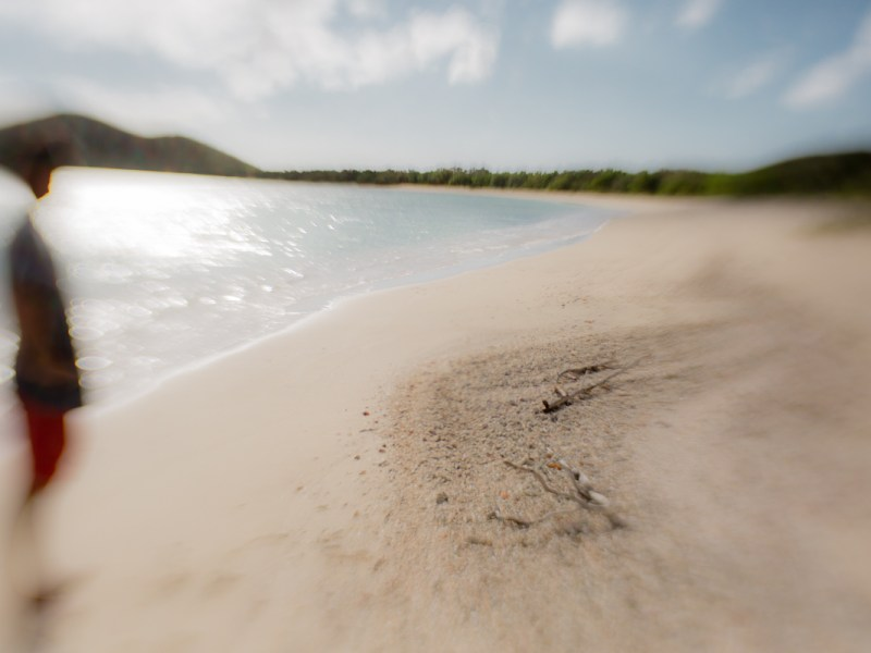 Artistic photographic image of a blurry man standing on a tropical beach looking off into the distance.