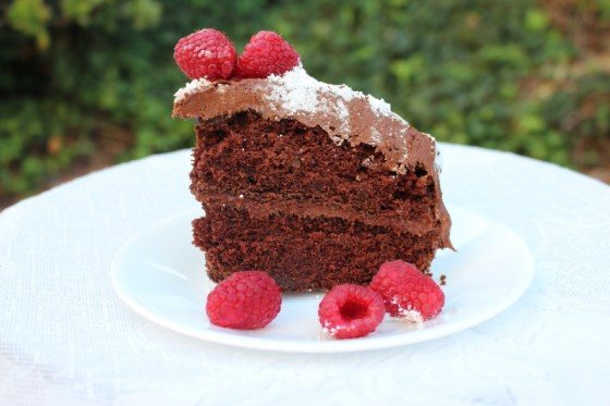 Create a beautiful and easy Christmas Chocolate cake with this recipe, click through to read full article