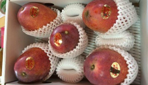 沖縄でマンゴーやパッションフルーツなど絶品のフルーツをお土産に安く買う裏技!