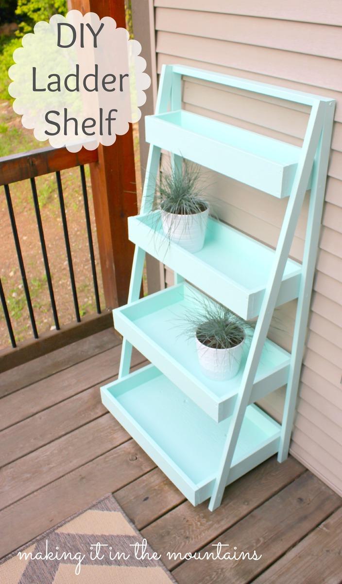 Ana White  DIY Ladder Shelf  DIY Projects