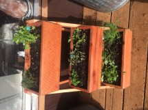 Ana White Cedar Triple Planter Box - Diy Projects