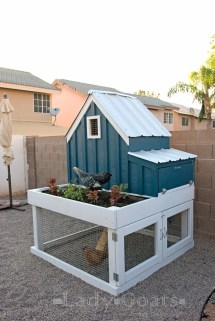 Small Chicken Coop With Planter Clean Tray And
