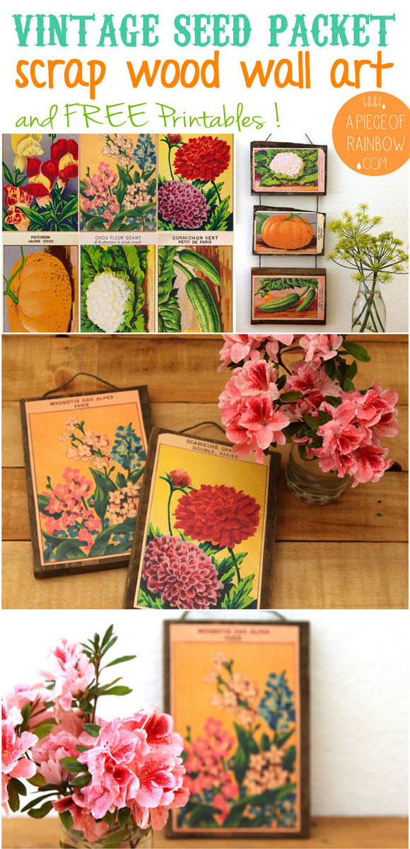Ana White Scrap Wood Amp Vintage Seed Packets Wall Decor