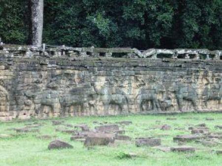 Terraza elefantes