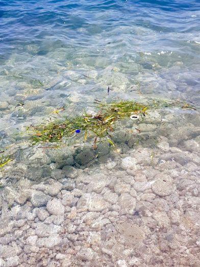 Suciedad en el mar