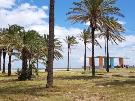 Playa de la Patacota