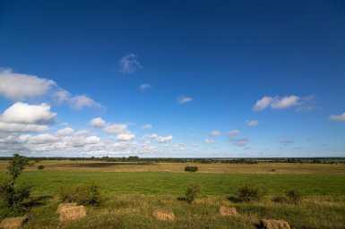 Fields in Estonia