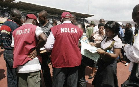 NDLEA Arrests Owerri's Notorious Drug Dealer