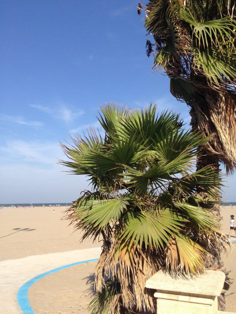 Konačno smo se dočepali gradske plaže