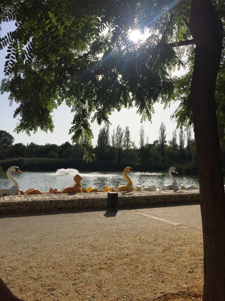20. dan: park Turija
