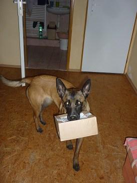 Abba upratuje krabicu