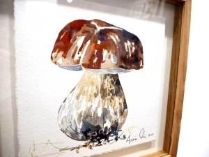 TAB0022-champignons-27×27