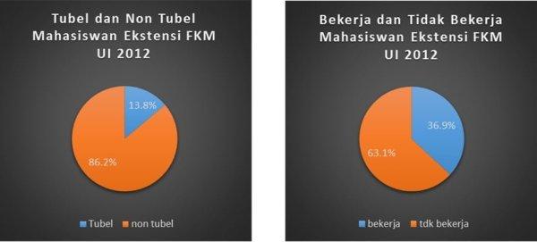 tabel mahasiswa ekstensi FKM UI 2012