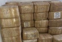 Sedena incautan casi 2 toneladas de Marihuana