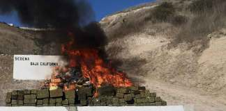 Sedena incinera droga en Baja California