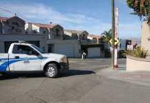 Policías, seguridad pública, servidor publico