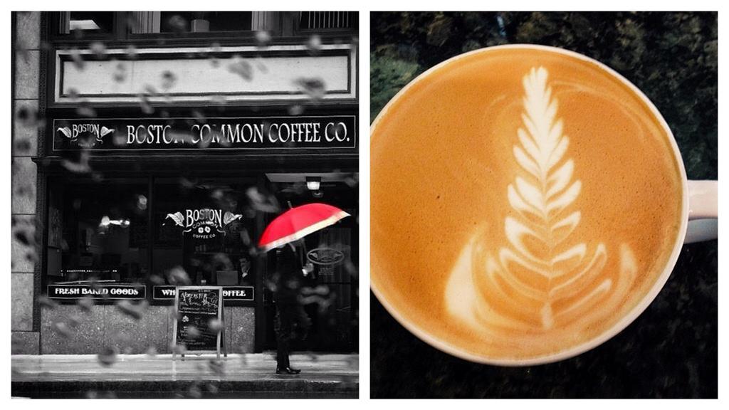 Boston Common Coffee North End