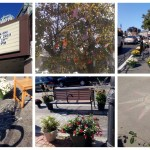 Park(ing) Day 2014 ~ Wollaston Theatre