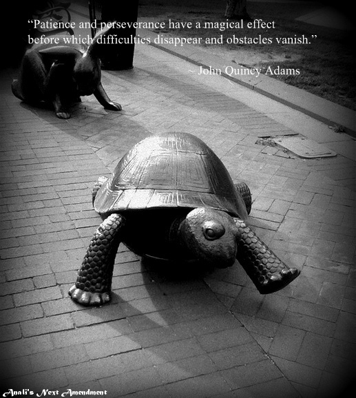 tortoise + hare with quote