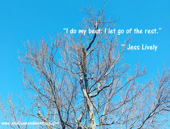 Bare tree branches against blue sky with text of Jess Lively quote.