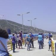 Papagayos azules se vieron en el cielo de Vargas
