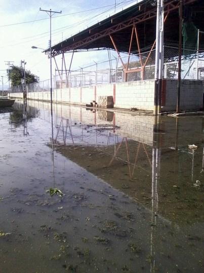 aguacatal aragua 3