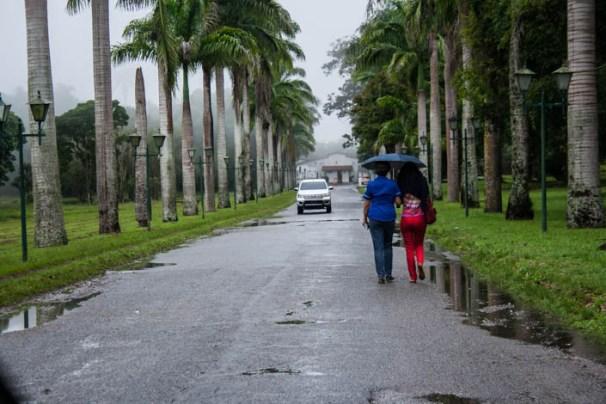 Estudiantes de la Universidad Simón Bolívar deben pedir cola para poder trasladarse a la casa de estudio. Foto: @rastavafotografía