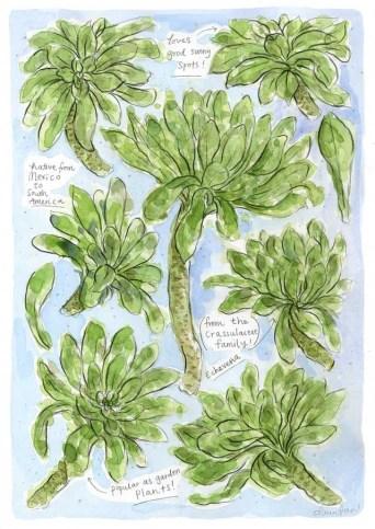 Ilustración palmeras