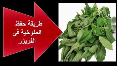 Photo of طريقة تخزين الملوخية في الفريرز