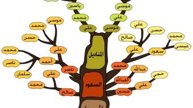 Photo of شجرة العائلة