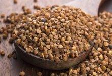 Photo of فوائد الحنطة السوداء للجسم