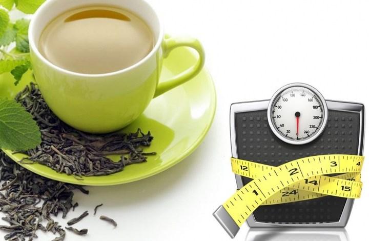 أهمية الشاي الاخضر في انقاص الوزن