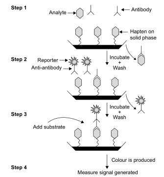 The scheme shows a typical competitive solid-phase immunoassay commonly used to detect drugs of abuse. It is a heterogeneous format using washing steps to remove materials that did not bind immunologically. Signal is inversely proportional to the concentration of free drug in the sample.