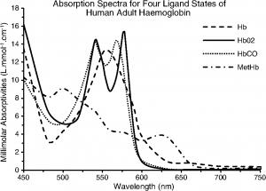 Spectres d'Absorption de l'oxyhémoglobine