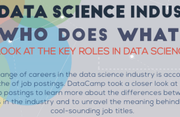 Important Job Roles in Data Science Industry Today – Who Does What ?