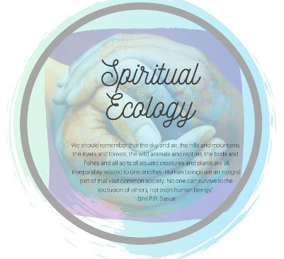 Spiritual Ecology. An Easter Retreat. 10-13 April 2020, Auckland