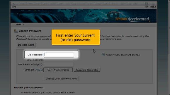 cPanel Password