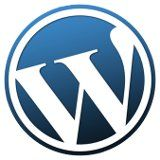 WordPress Hosting 101
