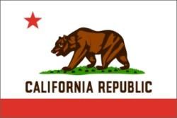 California state flag New york