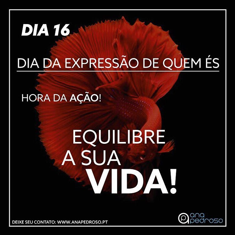 #16 Dia | DIA DA EXPRESSÃO DE QUEM ÉS!